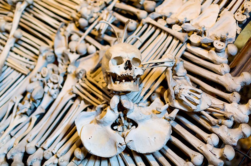 Ancient human skull and bone decoration in Sedlec Ossuary