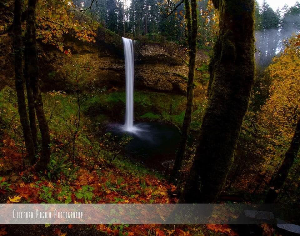 Waterfalls of Silver Falls State Park by Clifford Paguio