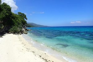 Visit Oslob Beach - Best things to do on Cebu Island