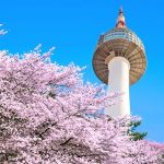 8 Top Tourist Attractions in Seoul