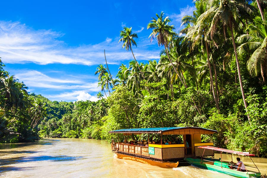 Cruise down River Loboc - Best Things To Do in BoholBohol